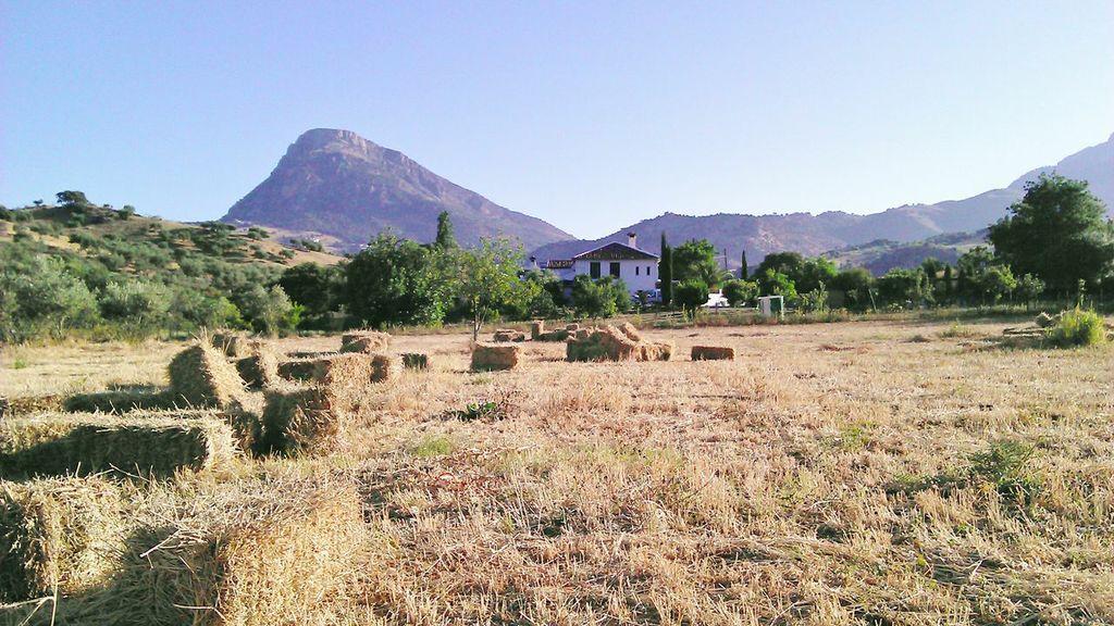Casa Rural Huerta La Terrona